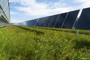 Lowest Carbon Solar